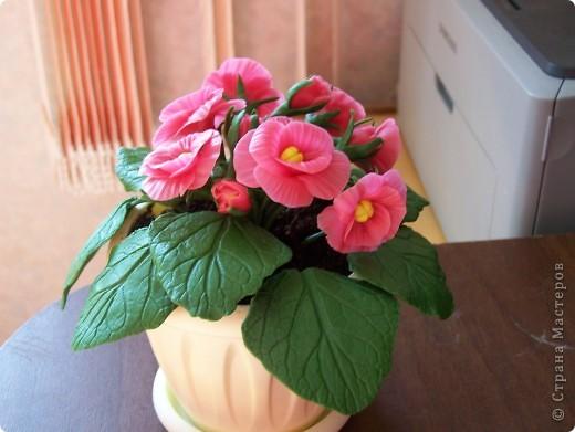 Здравствуйте дорогие друзья.Вот выставляю новенький цветочек,хотелось слепить фиалку,но что-то по моему не совсем похоже. фото 1