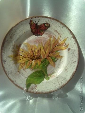 мои работы на тарелках-кракелюр получился более удачно фото 1