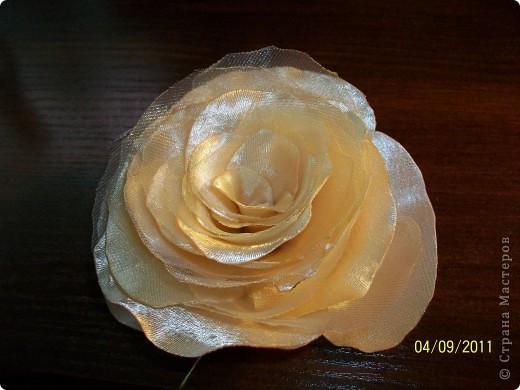 Розы по МК nerazly4niki фото 3