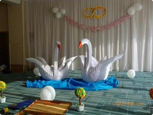Наша лебединная верность фото 2