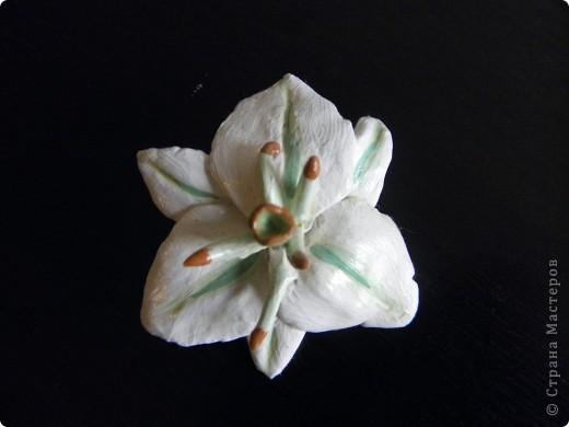 Хотела сделать брошку , очень люблю лилии.Материал застывающая масса.Но получились очень толстые листочки и тяжёловато.А мне нравиться . фото 1