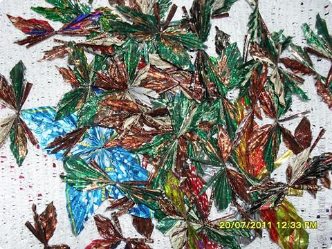 Наши бабочки фото 3