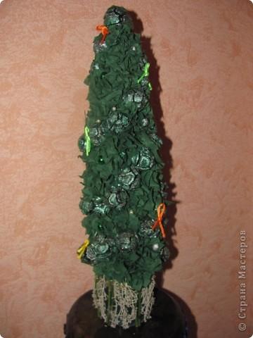 шишки с дерева платан и стручки от люпина, горшочек мхом обделан фото 2