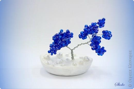 Синее деревце фото 1