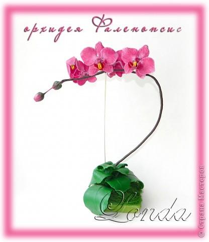 Очень мне хотелось сделать орхидею, долго смотрела на другие работы и в итоге решила попробовать. Вот что вышло