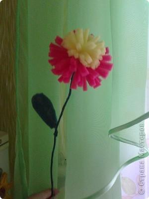 Цветок из двух кухоных губок