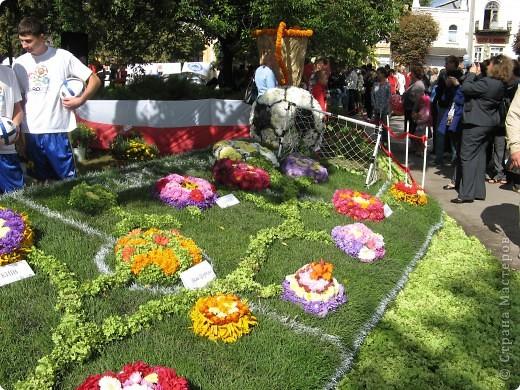 Каждый год в начале сентября в городе Белая Церковь проходит День города и так называемый Праздник цветов. Приглашаю всех желающих насладится красивым зрелищем к которому мастера готовятся целый год. фото 3