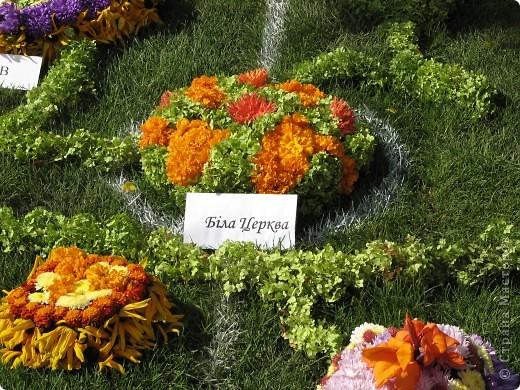 Каждый год в начале сентября в городе Белая Церковь проходит День города и так называемый Праздник цветов. Приглашаю всех желающих насладится красивым зрелищем к которому мастера готовятся целый год. фото 4