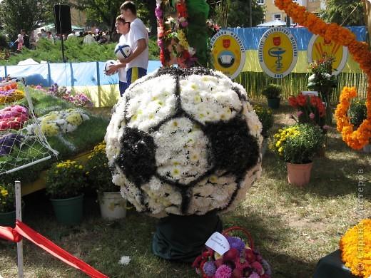 Каждый год в начале сентября в городе Белая Церковь проходит День города и так называемый Праздник цветов. Приглашаю всех желающих насладится красивым зрелищем к которому мастера готовятся целый год. фото 6
