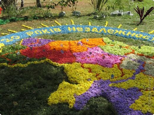 Каждый год в начале сентября в городе Белая Церковь проходит День города и так называемый Праздник цветов. Приглашаю всех желающих насладится красивым зрелищем к которому мастера готовятся целый год. фото 52