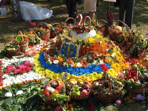 Каждый год в начале сентября в городе Белая Церковь проходит День города и так называемый Праздник цветов. Приглашаю всех желающих насладится красивым зрелищем к которому мастера готовятся целый год. фото 55