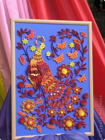 Каждый год в начале сентября в городе Белая Церковь проходит День города и так называемый Праздник цветов. Приглашаю всех желающих насладится красивым зрелищем к которому мастера готовятся целый год. фото 22