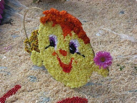 Каждый год в начале сентября в городе Белая Церковь проходит День города и так называемый Праздник цветов. Приглашаю всех желающих насладится красивым зрелищем к которому мастера готовятся целый год. фото 28