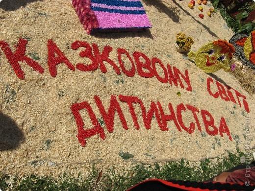 Каждый год в начале сентября в городе Белая Церковь проходит День города и так называемый Праздник цветов. Приглашаю всех желающих насладится красивым зрелищем к которому мастера готовятся целый год. фото 24