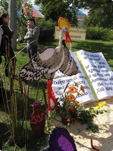 Каждый год в начале сентября в городе Белая Церковь проходит День города и так называемый Праздник цветов. Приглашаю всех желающих насладится красивым зрелищем к которому мастера готовятся целый год. фото 30