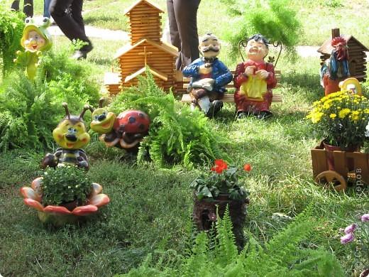 Каждый год в начале сентября в городе Белая Церковь проходит День города и так называемый Праздник цветов. Приглашаю всех желающих насладится красивым зрелищем к которому мастера готовятся целый год. фото 38