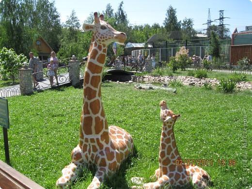Нижегородский зоопарк фото 13
