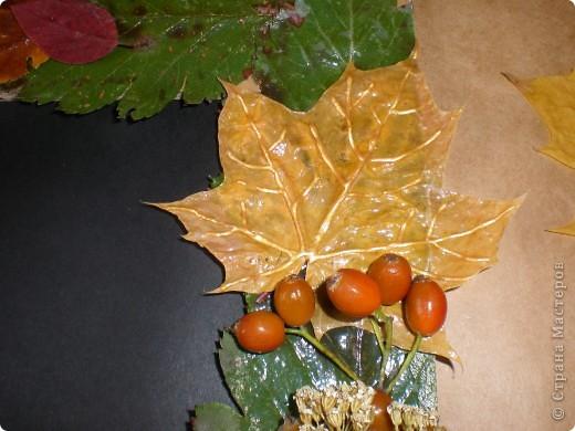 Рамка для фотографии, украшенная сухими листьями и ягодами фото 2