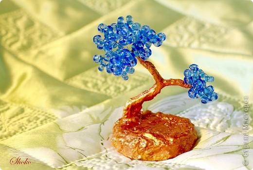 Синее деревце фото 6