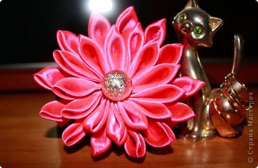 Мой розовый цветок!