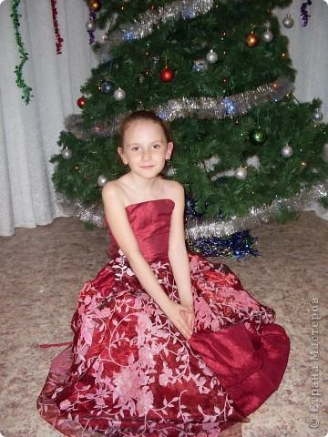 Шила к прошлому новому году, решила похвастаться, жалко что только один раз одели, теперь ей новое подавай, ох уж эти девчонки))))) фото 1