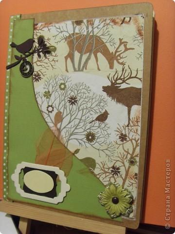 """Идея создания обложки возникла давно. Хотелось сделать обложку для учебника и рабочей тетради дочки.  Сразу в голове стали возникать образы.  Это будет обложка для  тетради по предмету """"Окружающий мир"""", но ведь это может быть и """"Природоведение"""", """"Зоология"""", """"Биология"""". фото 8"""