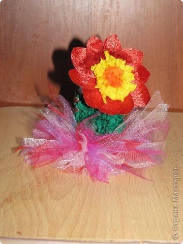 Сладкая парочка из Мексики (кактусы, торцевание) фото 7