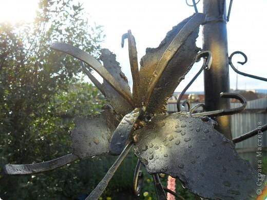 """Не смотря на осень, у нас появились цветы.... железные. Моему мужу просто сварки оказалось мало и он """"полностью подчинил себе металл"""" начал пробовать себя в ковке железа, конечно у него нет пока горна, но подручными средствами. фото 5"""
