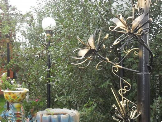 """Не смотря на осень, у нас появились цветы.... железные. Моему мужу просто сварки оказалось мало и он """"полностью подчинил себе металл"""" начал пробовать себя в ковке железа, конечно у него нет пока горна, но подручными средствами. фото 2"""