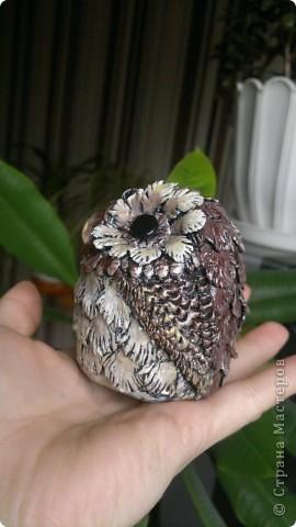 Хотела слепить сову, но больше напоминает воробья - глазастого фото 2