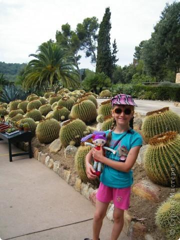 Кактусы, ч 1. Испания. Санта Сусанна.  Ботанический сад.  фото 3