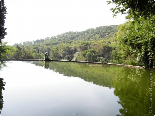 Кактусы, ч 1. Испания. Санта Сусанна.  Ботанический сад.  фото 38