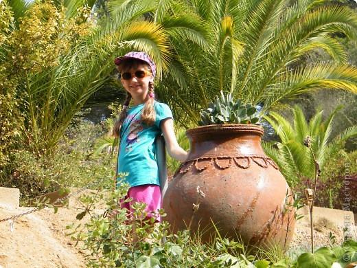 Кактусы, ч 1. Испания. Санта Сусанна.  Ботанический сад.  фото 51