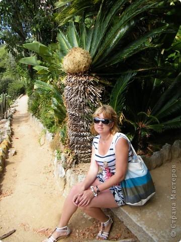 Кактусы, ч 1. Испания. Санта Сусанна.  Ботанический сад.  фото 67
