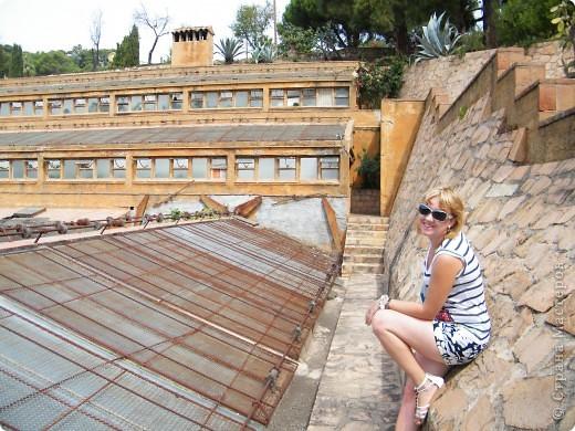 Кактусы, ч 1. Испания. Санта Сусанна.  Ботанический сад.  фото 44