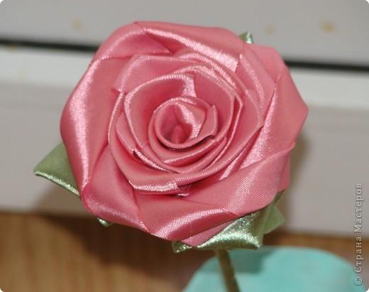 Роза своими руками страна мастеров