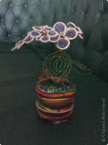 Листя фіалки виконано методом французького плетіння. фото 1