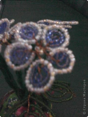 Листя фіалки виконано методом французького плетіння. фото 3