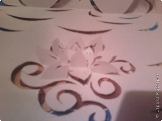 Мои лебеди. И даже лилия распустилась. фото 3
