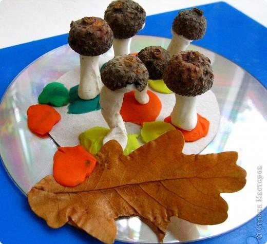 Ну какая же осень без грибов?! фото 4