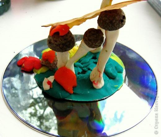 Ну какая же осень без грибов?! фото 3