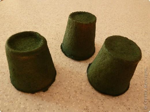 Представляю вашему вниманию мастер-класс по изготовлению ели из семян подсолнечника. Делается легко с минимумом затрат. фото 3