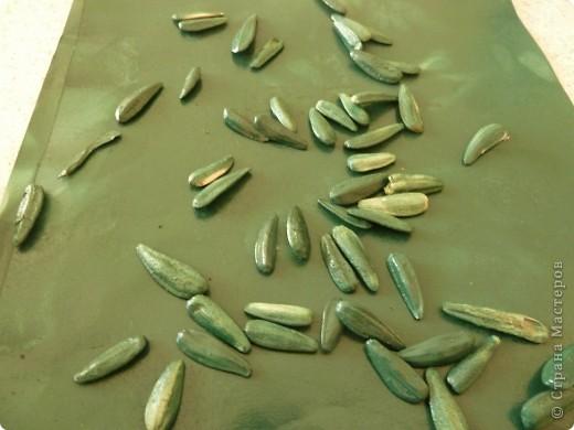 Представляю вашему вниманию мастер-класс по изготовлению ели из семян подсолнечника. Делается легко с минимумом затрат. фото 8