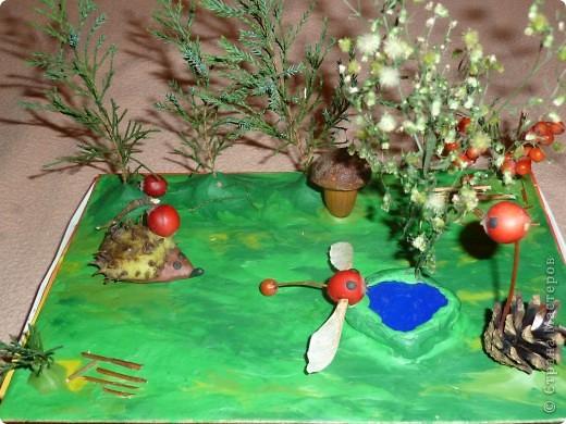 Наши поделки с сыном в детский сад на праздник осени. Отнесли нашу работу в садик, а воспитатель говорит, что в этом году надо сделать объемные поделки. Стали творить дальше. фото 3