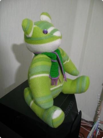Зеленый мишка фото 4