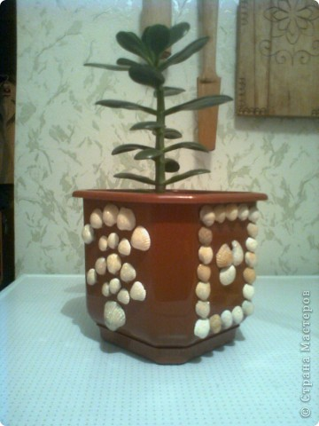 Речными ракушками и бисером украшаем самую простую вазочку. И пусть она напоминает нам о прошедшем лете, об отдыхе не берегу славной Оки. фото 3