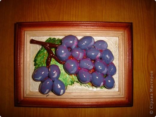 Виноград 10Х15