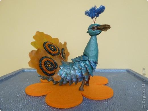 Втянулись в творческий процесс к празднику осени. Сделали ещё павлина, ель и домик. фото 1