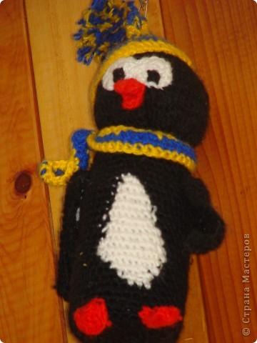 Пингвиненок Лоло фото 2
