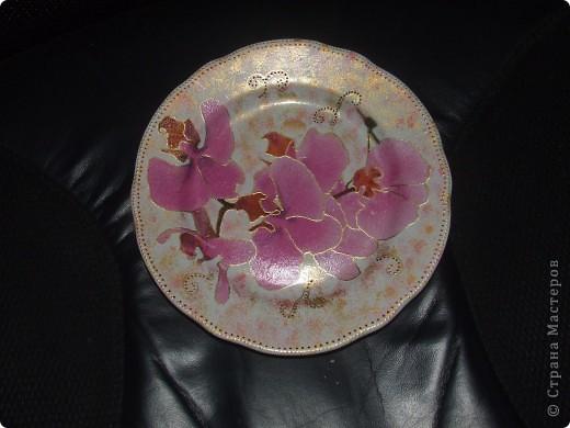 моя первая тарелочка   фото 2